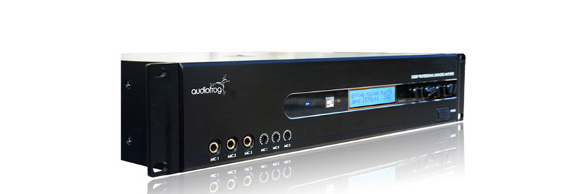 Amply Audiofrog D300P