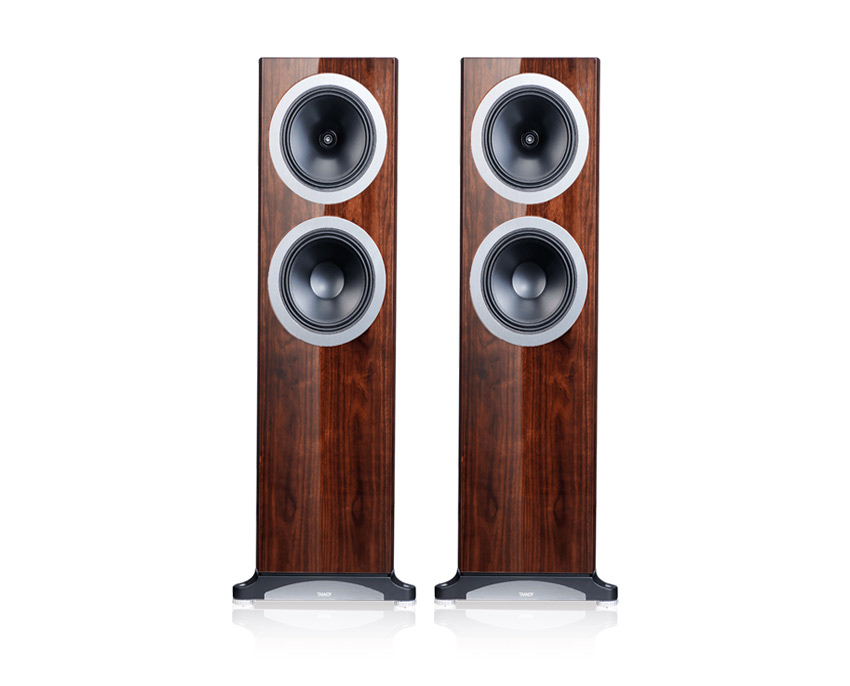 Loa Tannoy Definition DC10Ti