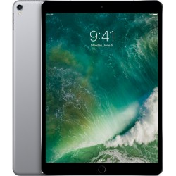 iPad Pro 12.9 inch 4G Wifi 256GB Space Gray (2017)