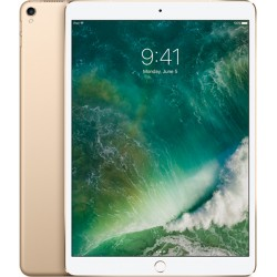 iPad Pro 12.9 inch Wifi 512GB Gold (2017)