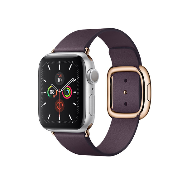 Apple Watch Series 5 (GPS, 40mm, Space Gray Aluminum Case, Leather Band)-2